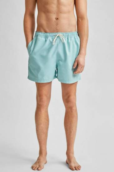 Selected homme slhclassic colour swimshort